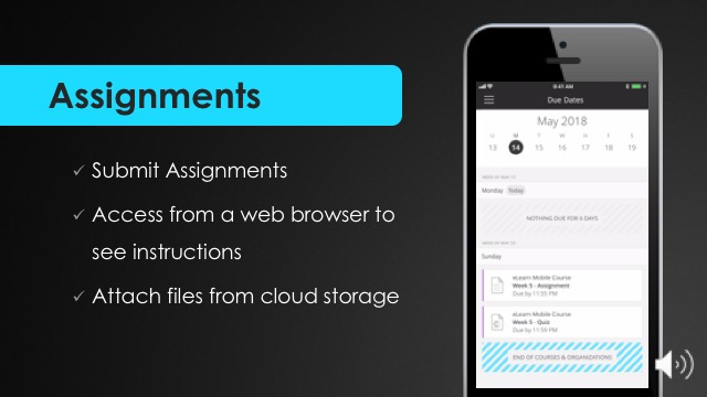 Assignments in the Blackboard Mobile App.